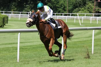 horse-racing.